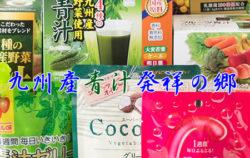 九州薬品工業 株式会社